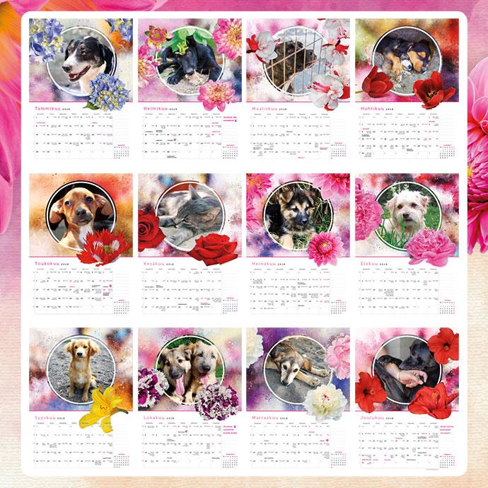 Koira-aiheinen seinäkalenteri, kissa-aiheinen seinäkalenteri, eläinaiheinen seinäkalenteri. Kuvat kuukaisinäkymistä.