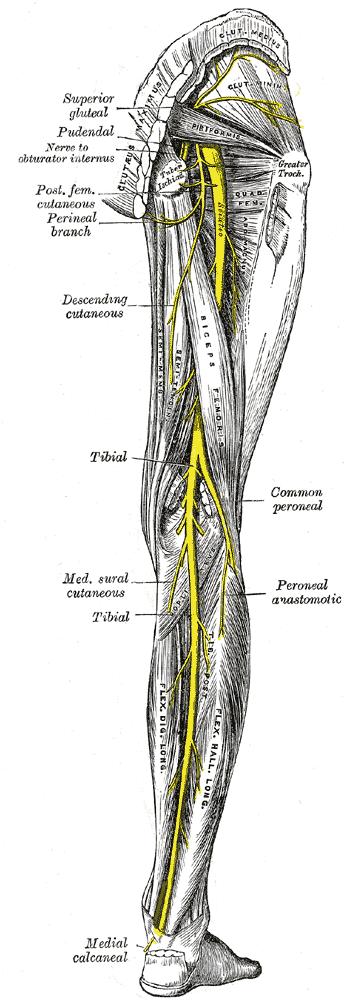 Kuva: Grey´s Anatomy